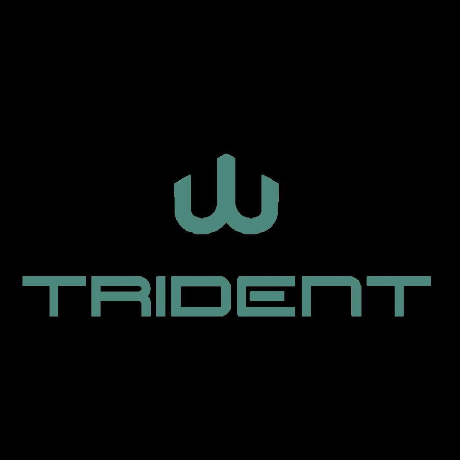 Trident B.V.